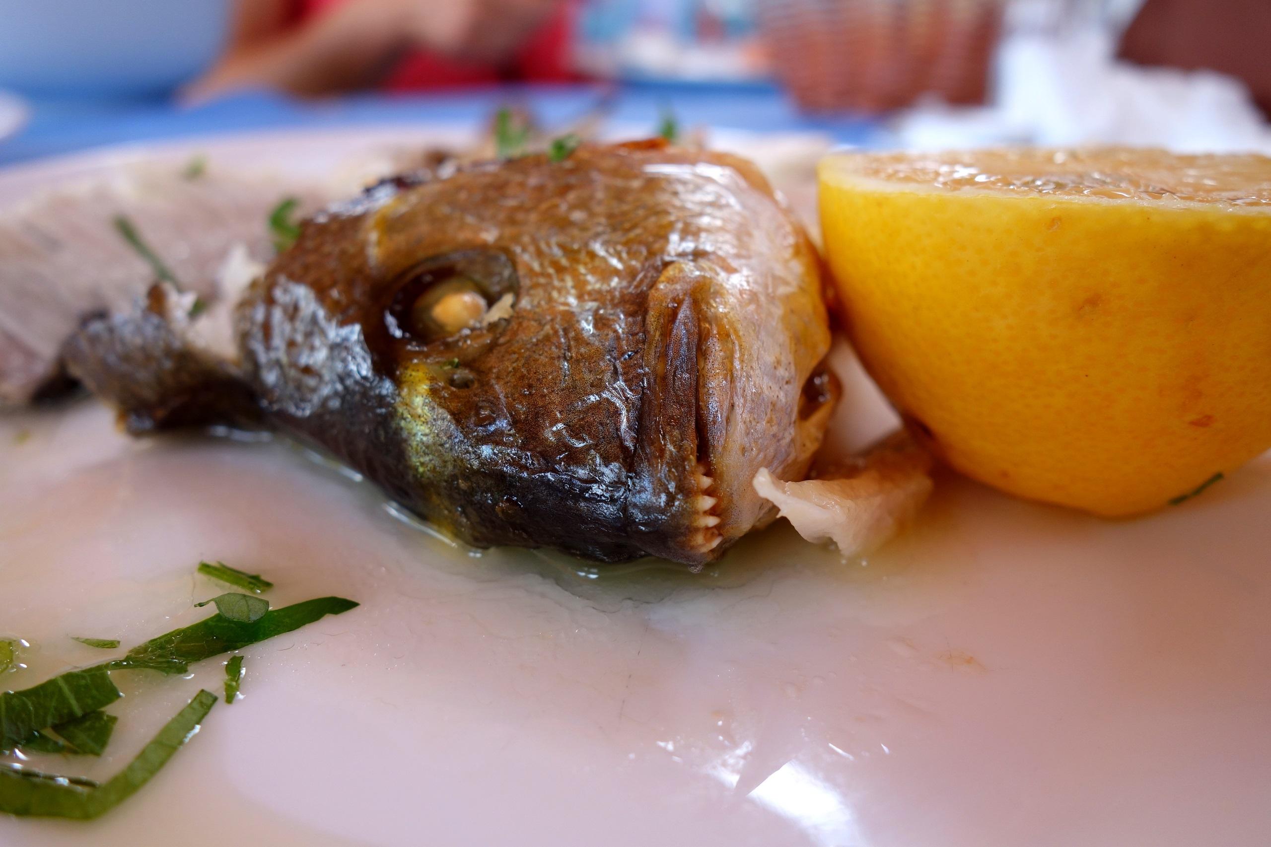 Kuchnia cypryjska - okoń morski