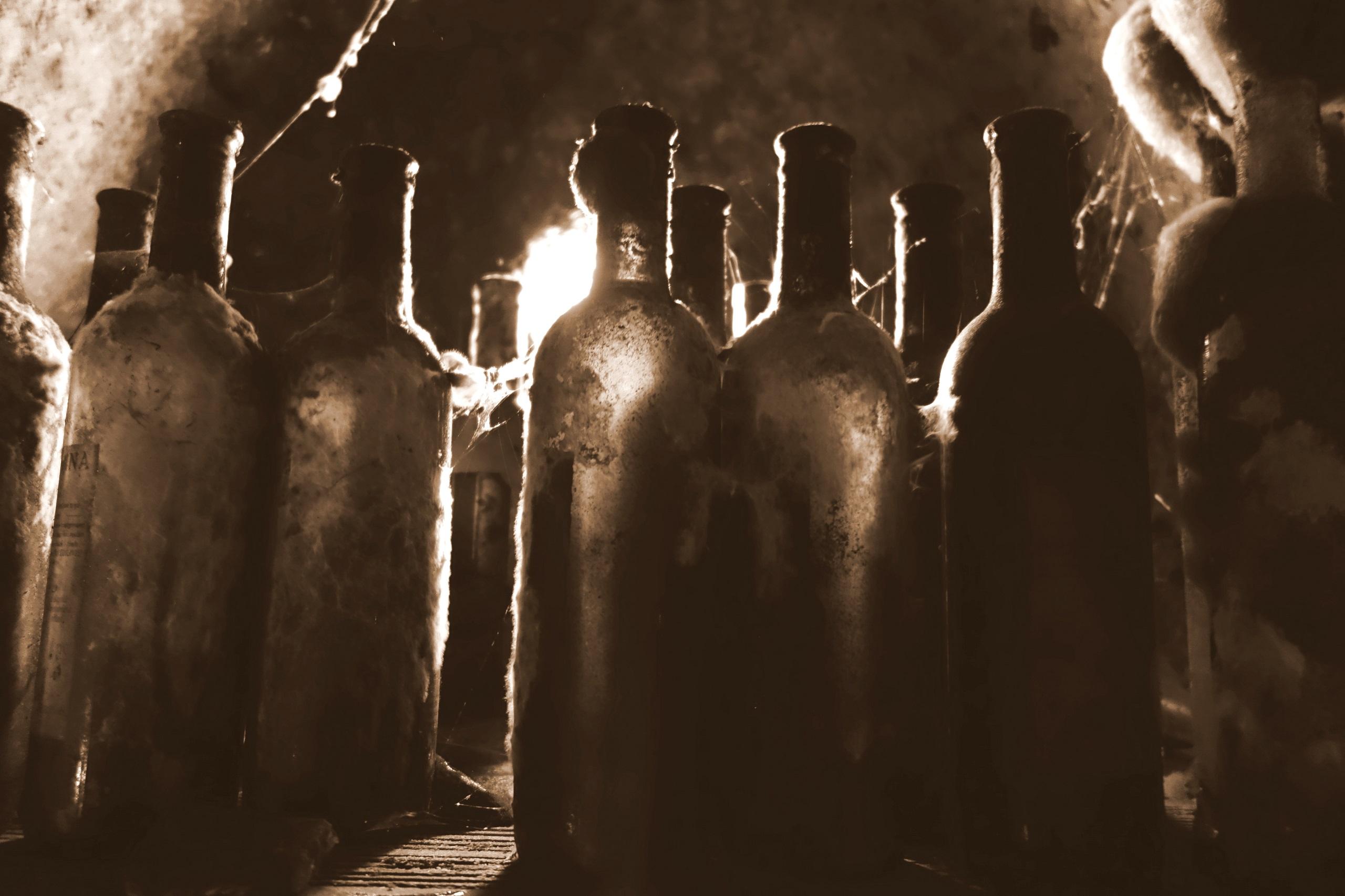 Piwnica w winiarni J & J Ostrožovič - Słowacki tokaj