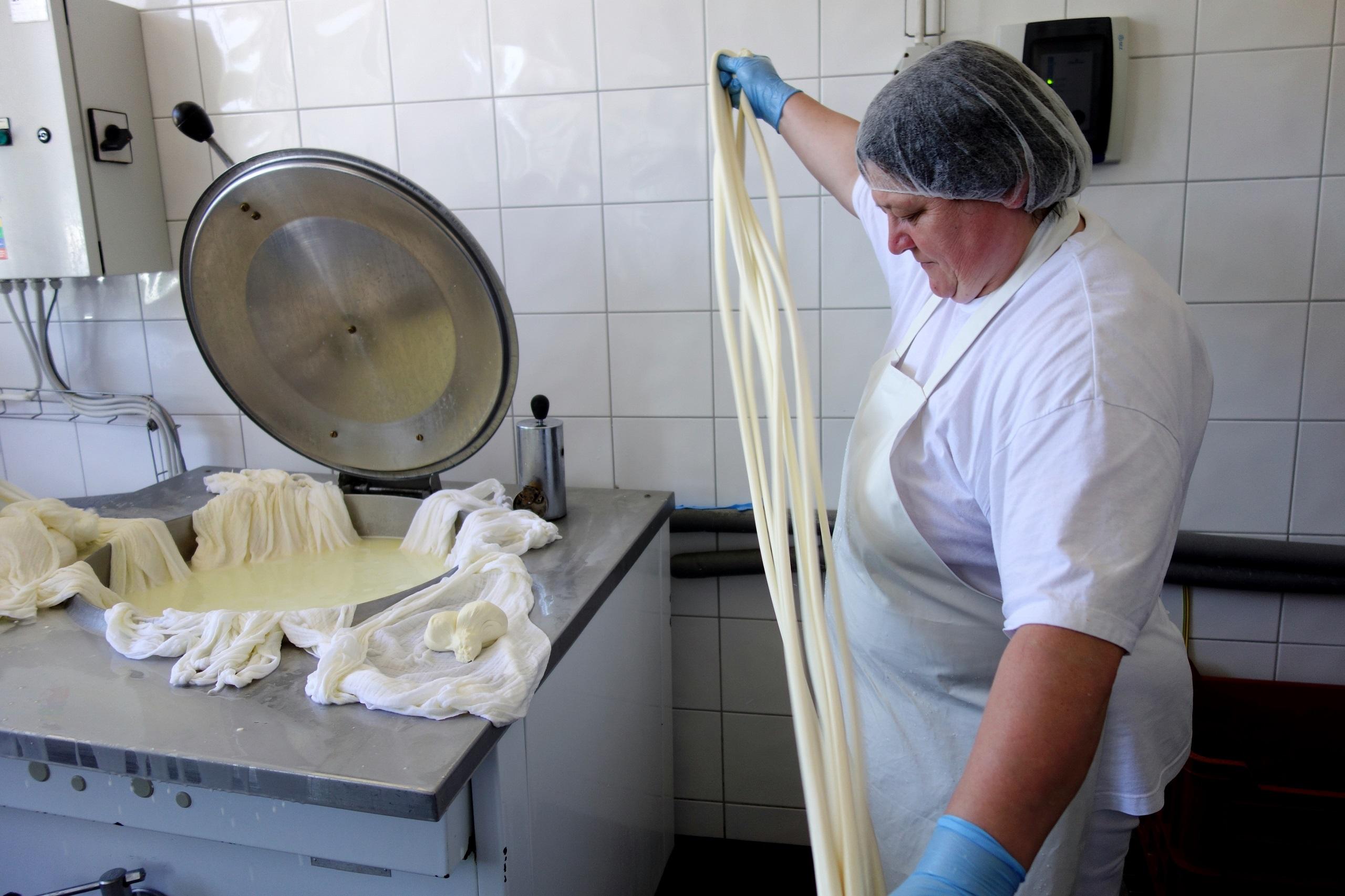 Ciężka praca w mleczarni - Farma Vychodna