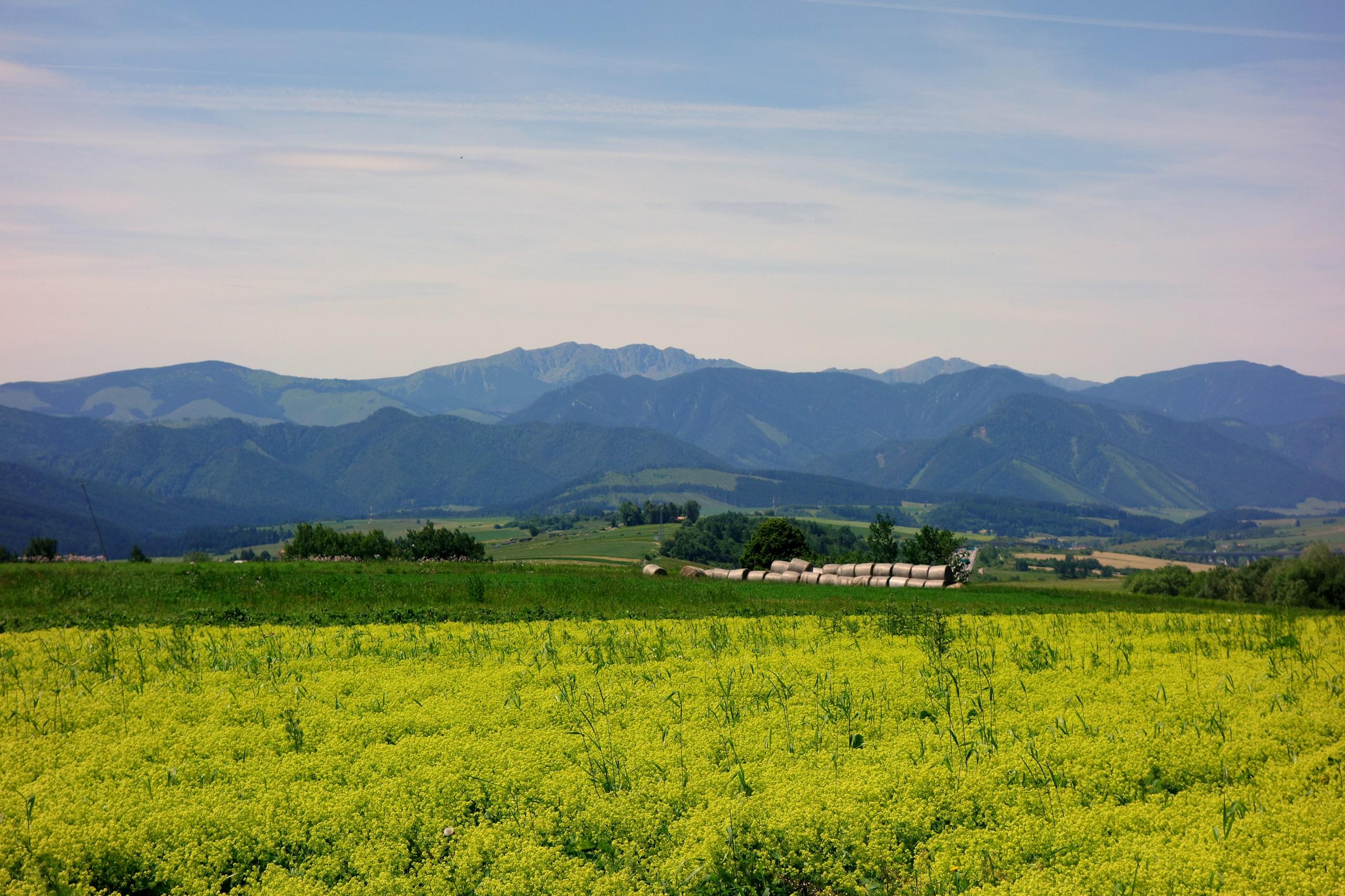 Farma Vychodna - położona najwyżej w regionie Liptov - Słowacja