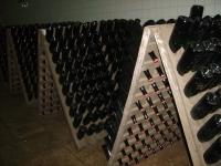 Piwnica wina/ The wine basement