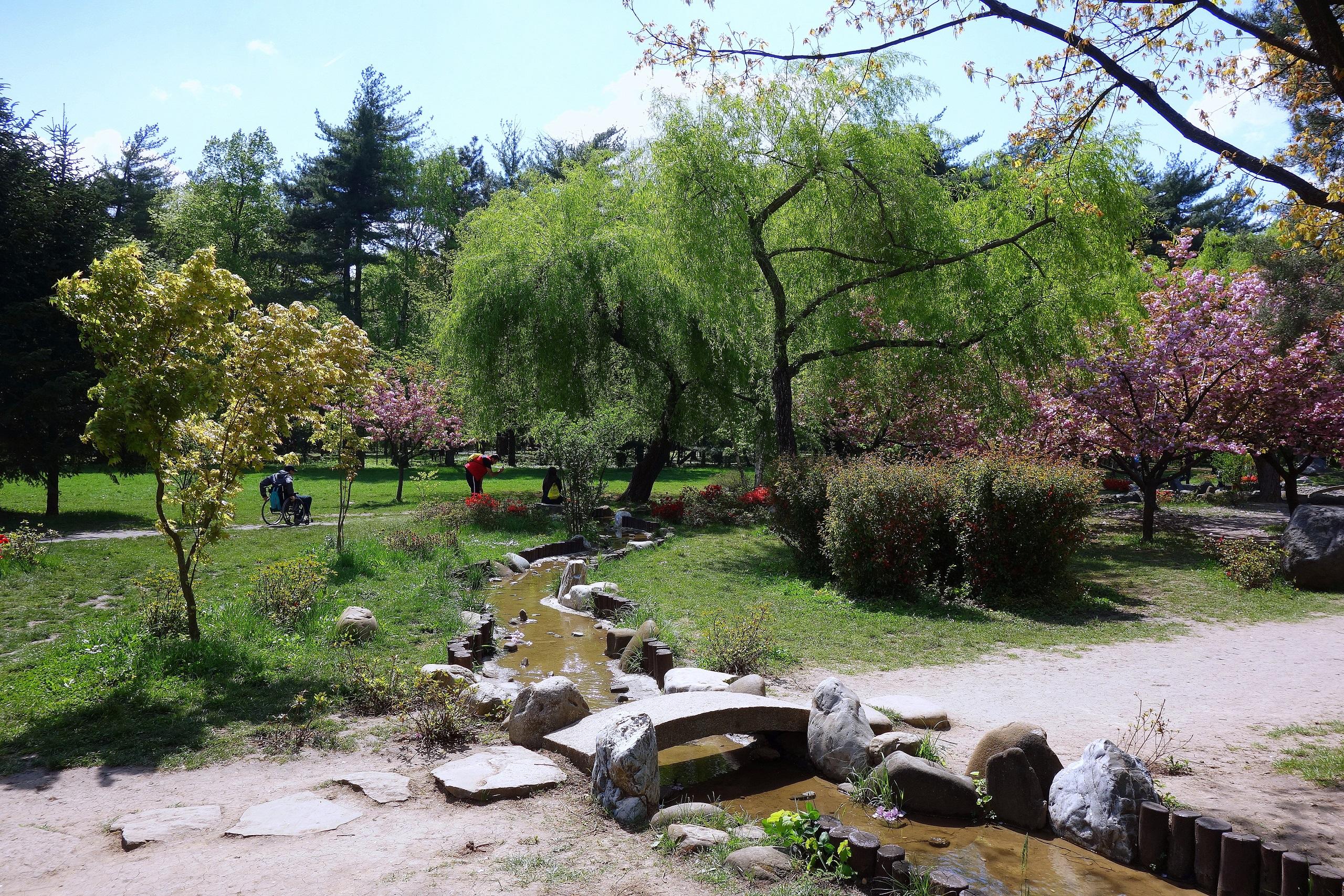 Ogród Japoński w Parku Herăstrău - Rumunia, Bukareszt