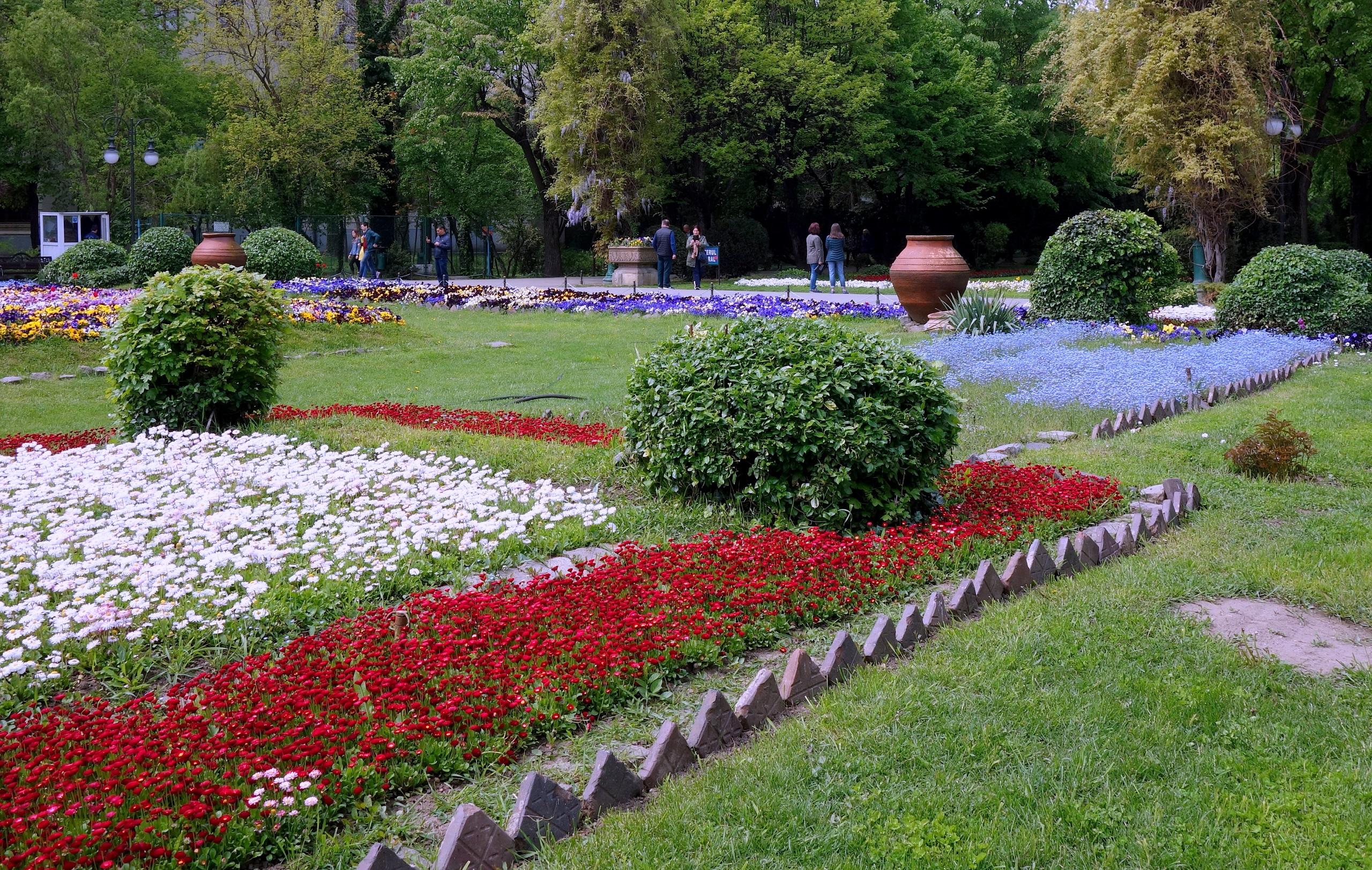 Ogród Cişmigiu i pięknie zasadzone kwiaty - Rumunia, Bukareszt
