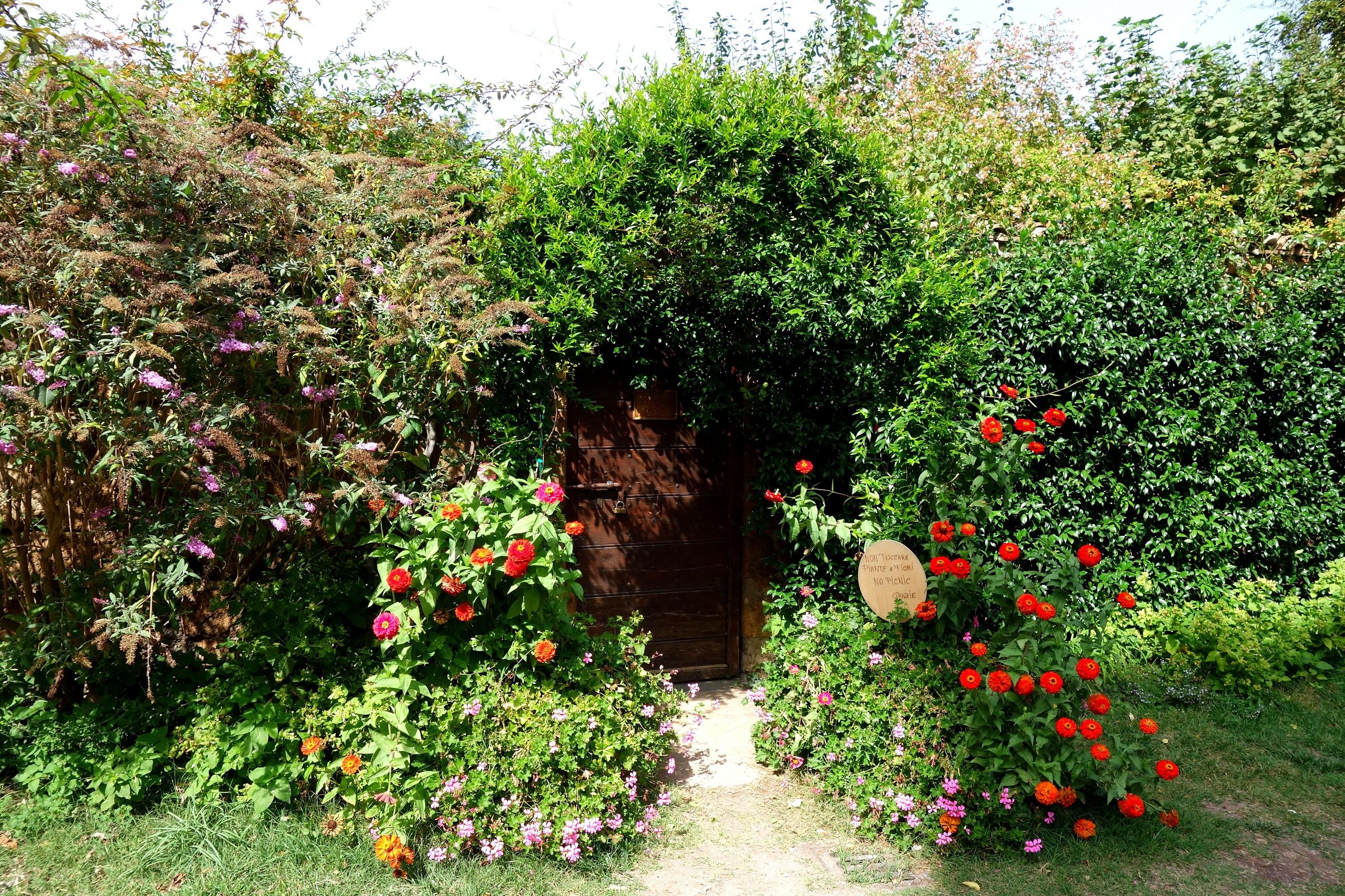 Kwiaty w Civita di Bagnoregio