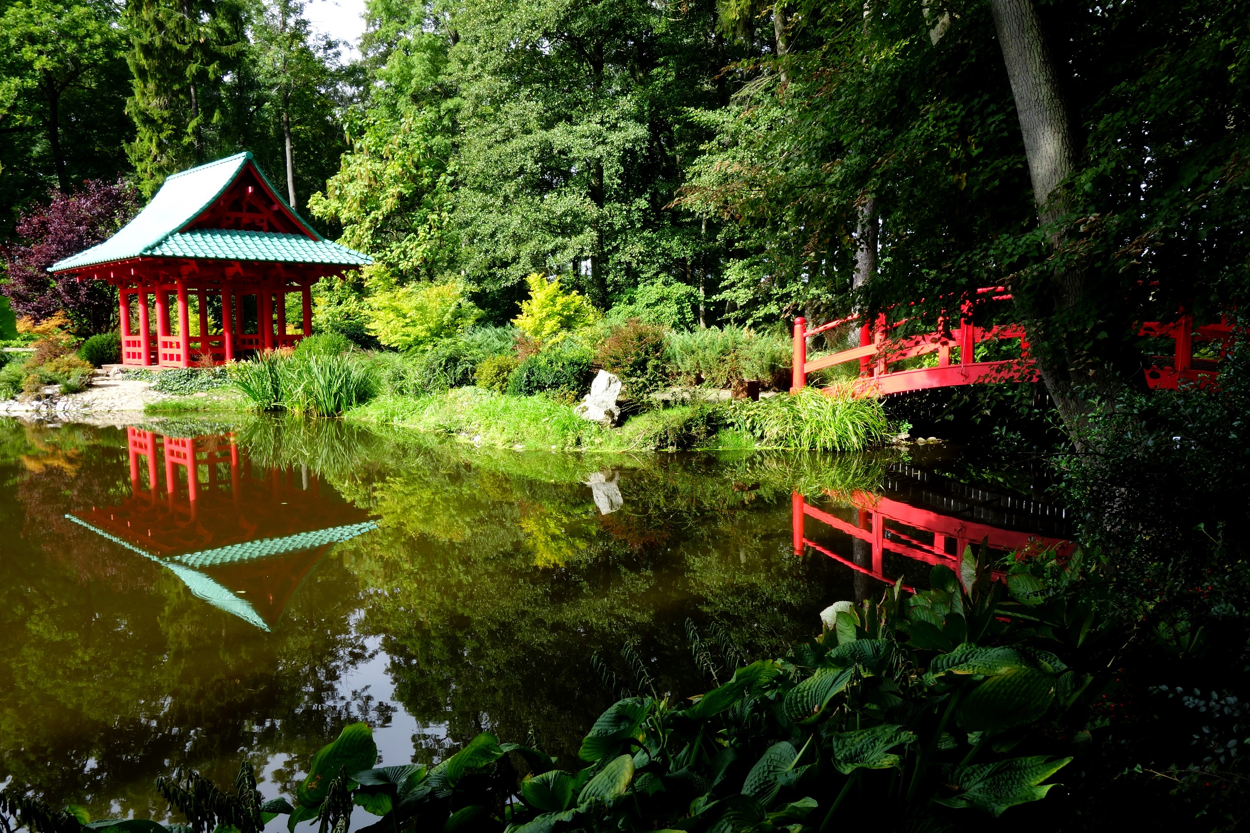 Pałac Mierzęcin - ogród japoński