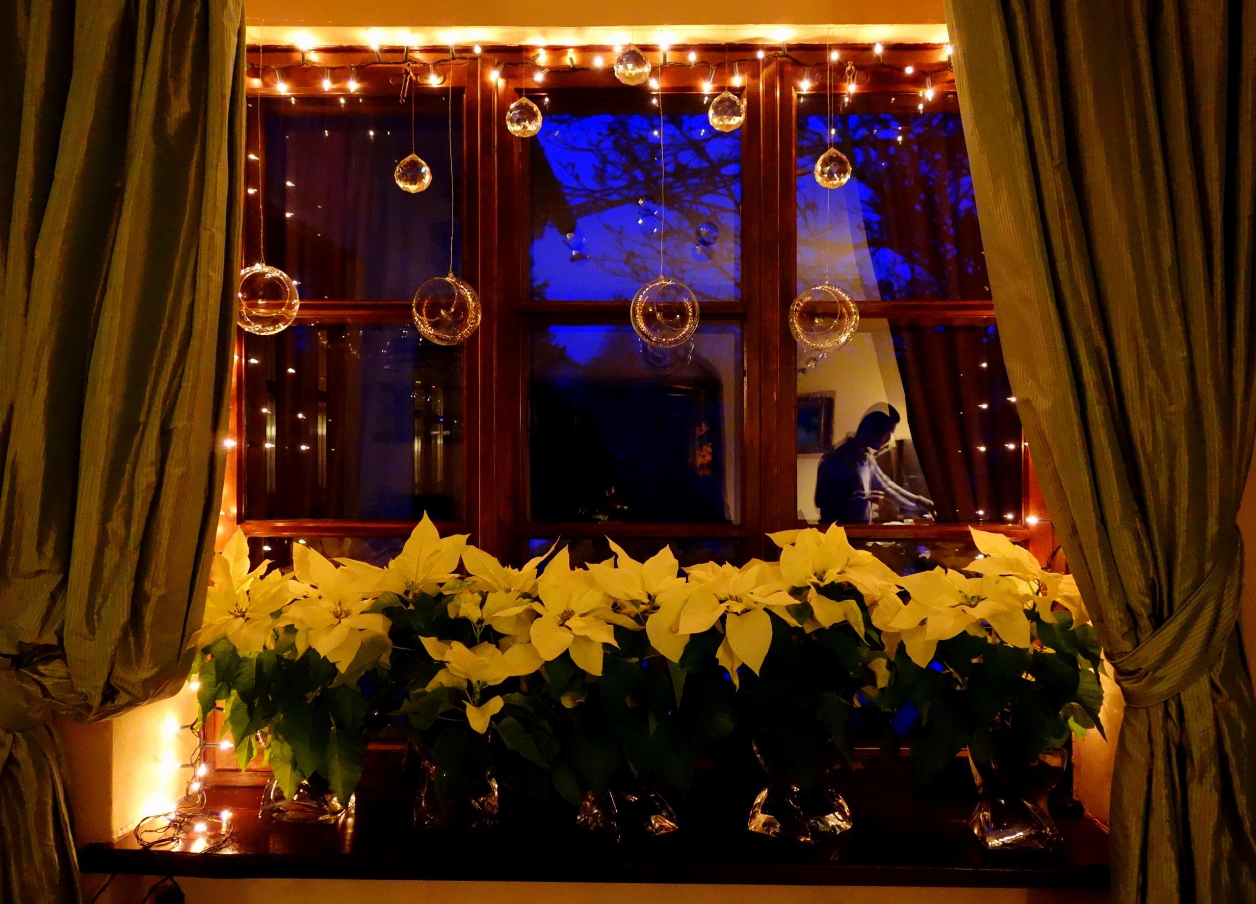 Jaworowy Dwór - moje ulubione okno