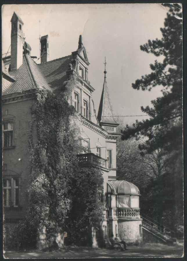 Hotel Dębowy - Pałac Dębowy dawniej
