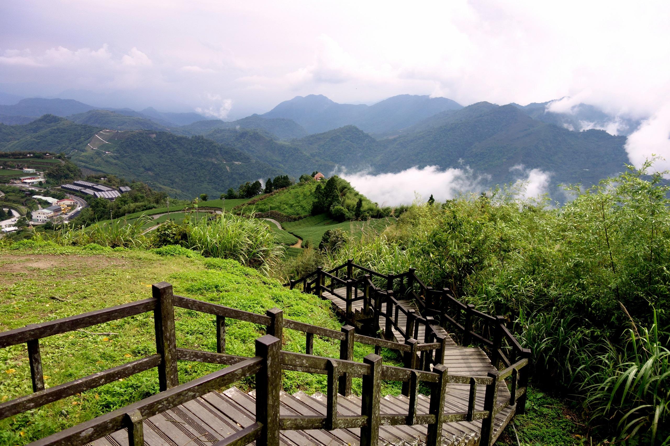Takie widoki są tylko na Tajwanie ;) - droga przez pola herbaciane
