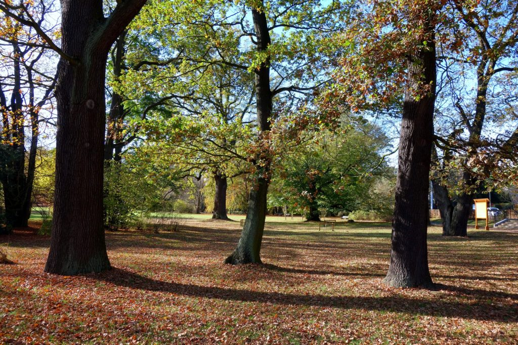 Park Szczytnicki - Wrocław
